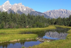 grand-teton-national-park-80548_1280